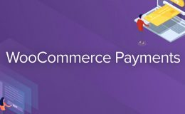 Introducing WooCommerce Payments, a New Solution to Help Merchants Conveniently Manage Payments