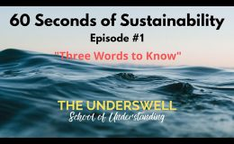 60 Seconds of Sustainability #1 – Three Words to Know